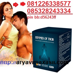 distributor-thors-hammer-distributor-hammer-of-thor-thors-hammer-indonesia-hammer-of-thor-indonesia.jpg